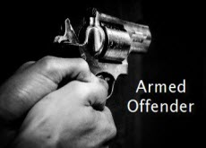 link to armed offender response plan