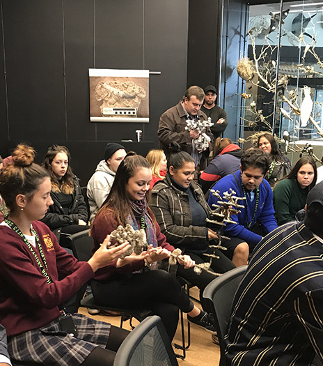 Experience Day students looking at the structure of ants nests at the Museum of Natural History