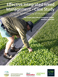 IWM Case Study - The Loose Leaf Lettuce Company