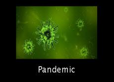 link to pandemic response plan
