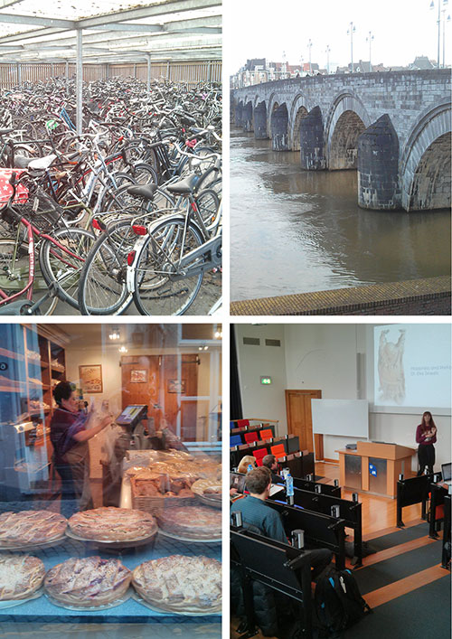 collage of Dutch landmarks form study abroad tour