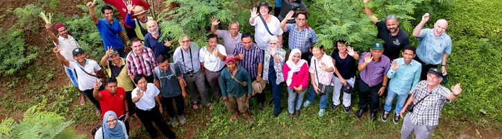 CropCow project team standing in a plantation in Sumbawa, Indonesia