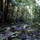 env-grant-blogg