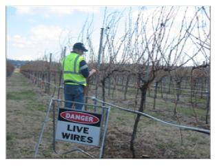 Vineyard Frost Protection