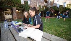Students studying at an outdoor table while others play sport in Duval courtyard