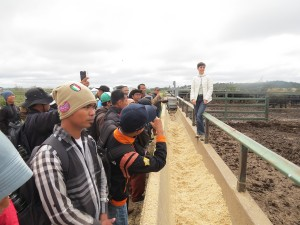 UNE's Dr Fran Cowley at Tullimba Feedlot explaining key components of feedlot rations