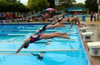 Austin Swimmers
