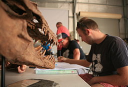 Replica of dinosaur skull in foreground with students working in background