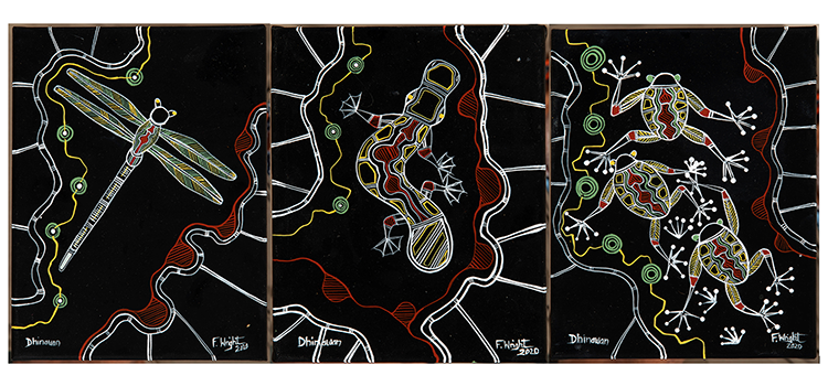 Three artworks featuring a stylised dragonfly, platypus and frogs on a black backdrop