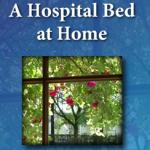A Hospital Bed at 2