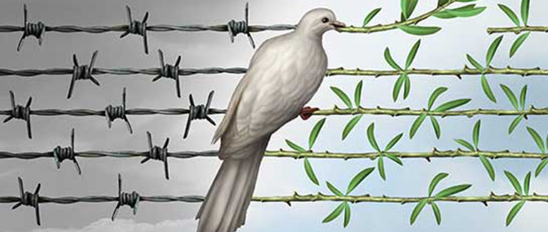 Graphic of a dove carrying an olive leaf sitting on barbed wire