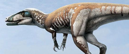 Artist's rendition of dinosaur