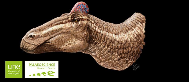 Illustration of dinosaur Edmontosauraus regalis' head showing fleshy comb