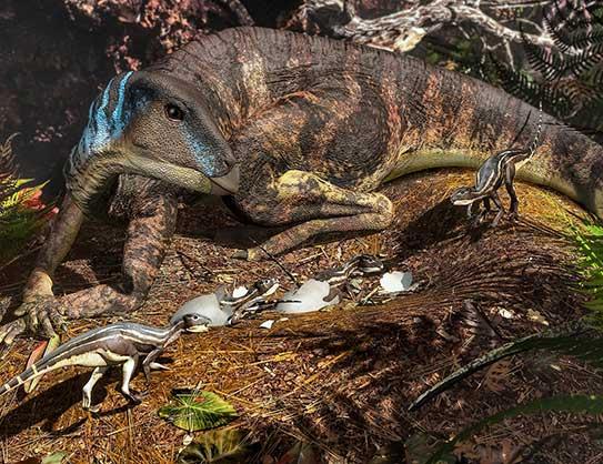 Artist's depiction of an ornithopod dinosaur tending its nest.