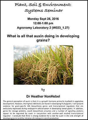 Heather Nonhebel seminar poster