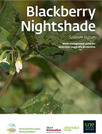 Blackberry nightshade: Weed management guide for Australian vegetable production
