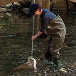 Study Aquatic Ecology at UNE