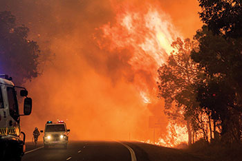 A major bushfire with vehicles and a person on a road.