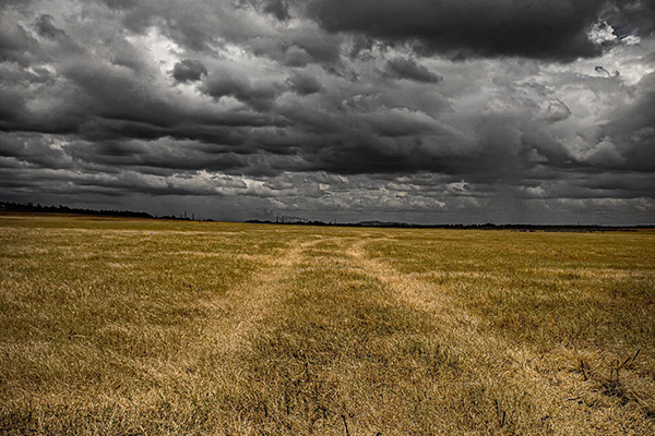 Dry field with tyre tracks and a stormy sky